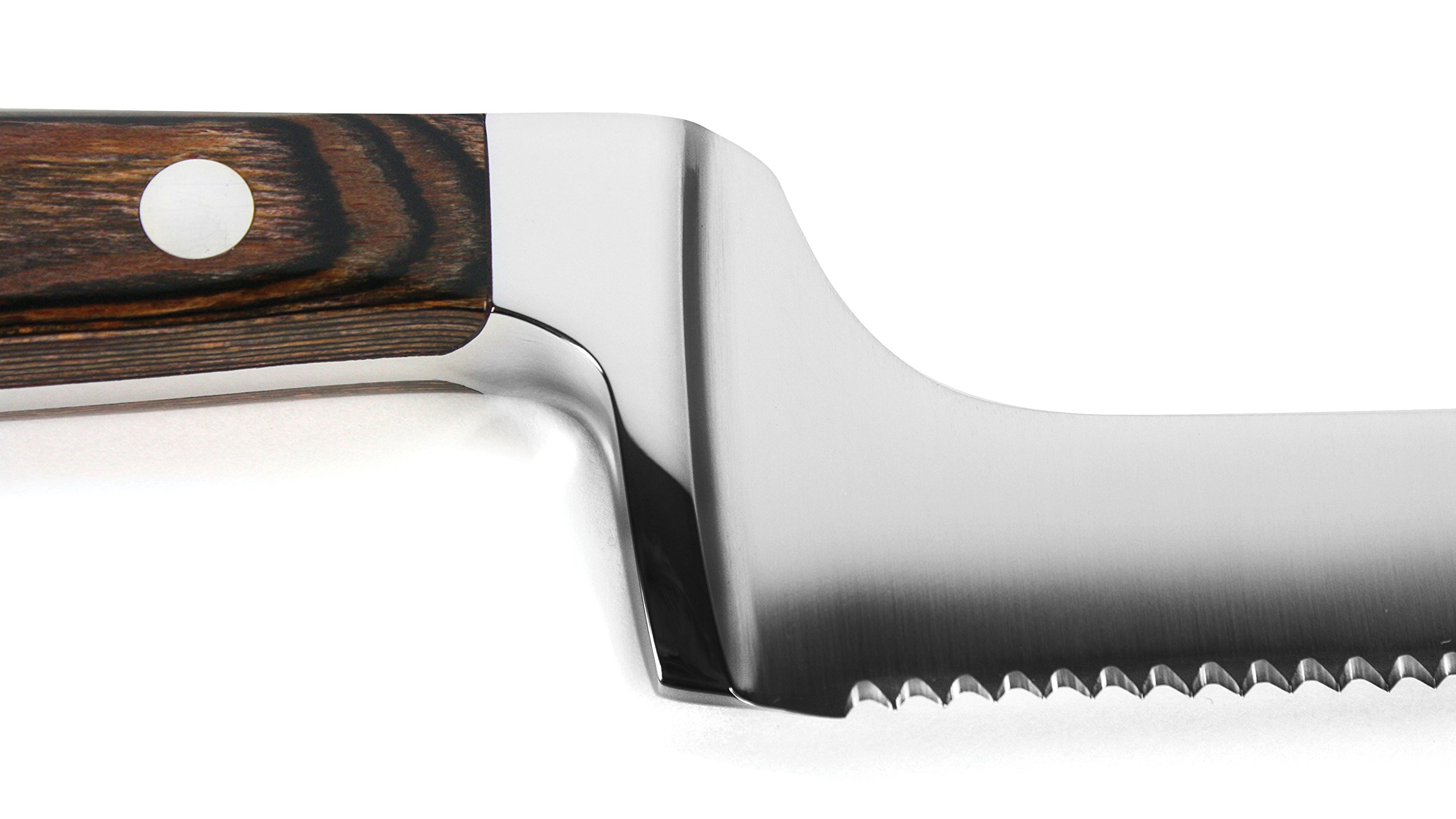 Lamson Signature Forged 9.5-inch Offset Bread Knife by Lamson (Image #3)
