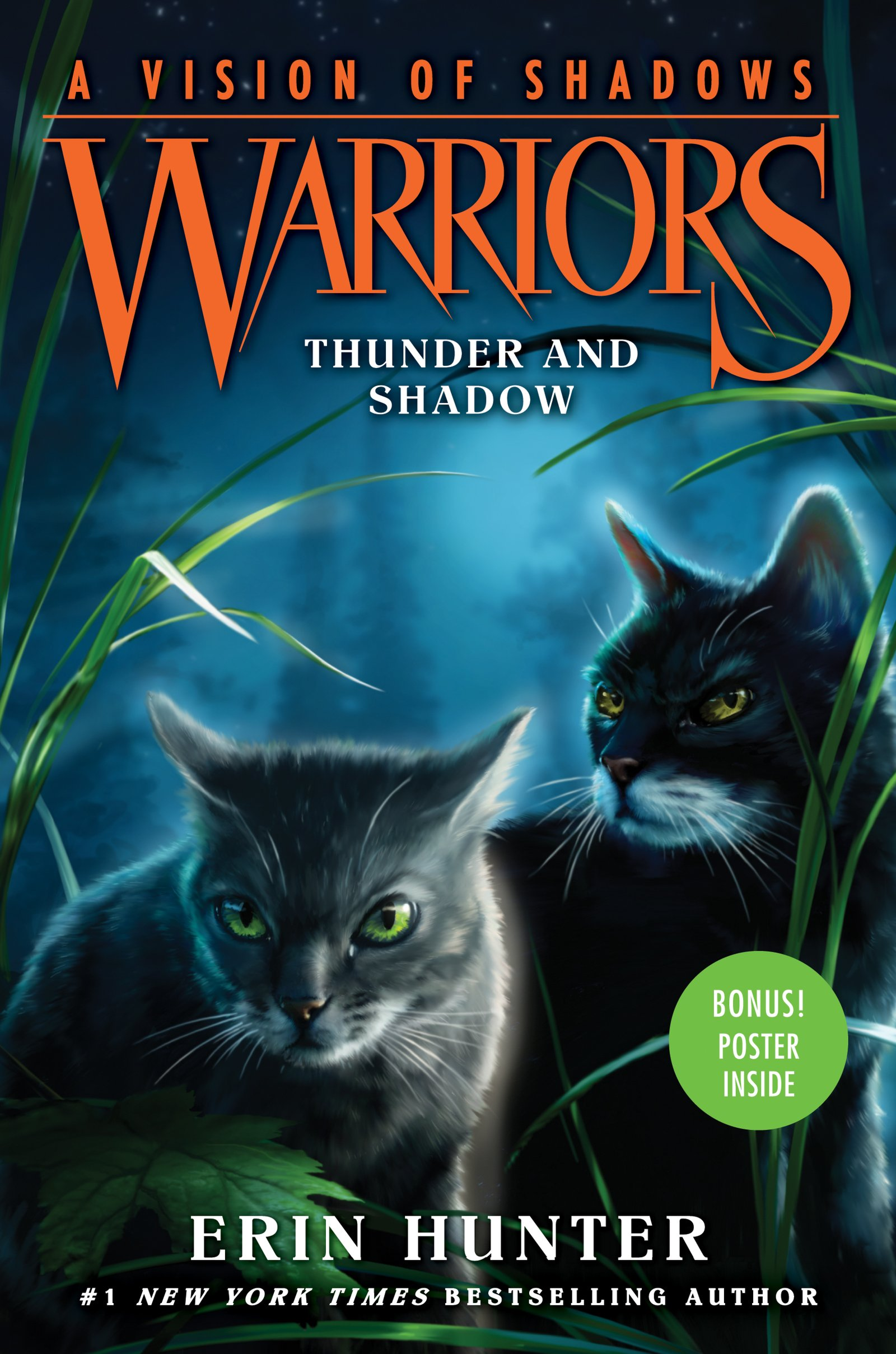 Warriors: A Vision Of Shadows #2: Thunder And Shadow: Erin Hunter:  9780062386410: Amazon: Books
