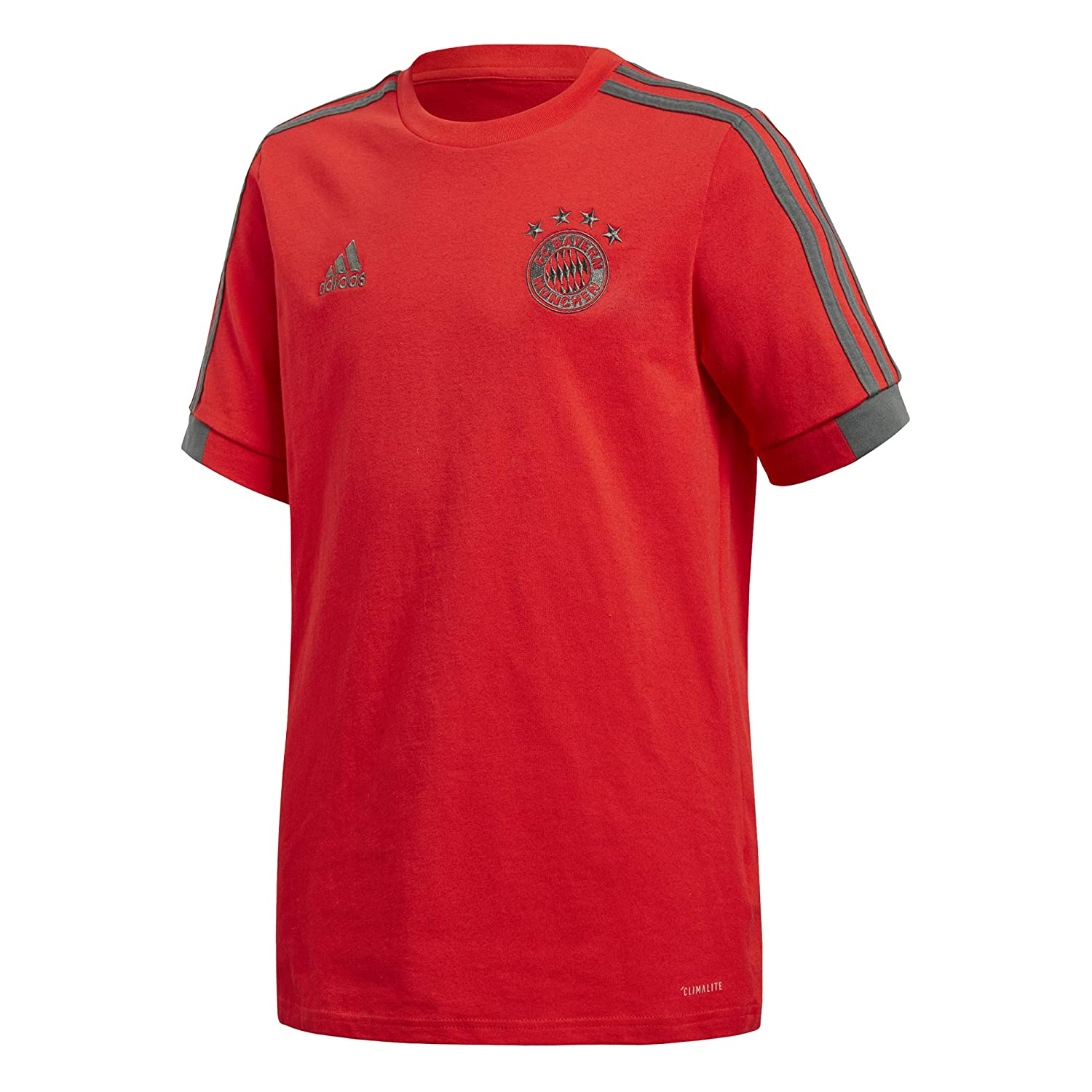 adidas T-Shirt Junior FC Bayern Munich 2018/19: Amazon.es ...