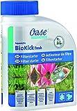 Oase 50562 - Productos para  cuidado de tratamiento de aguas