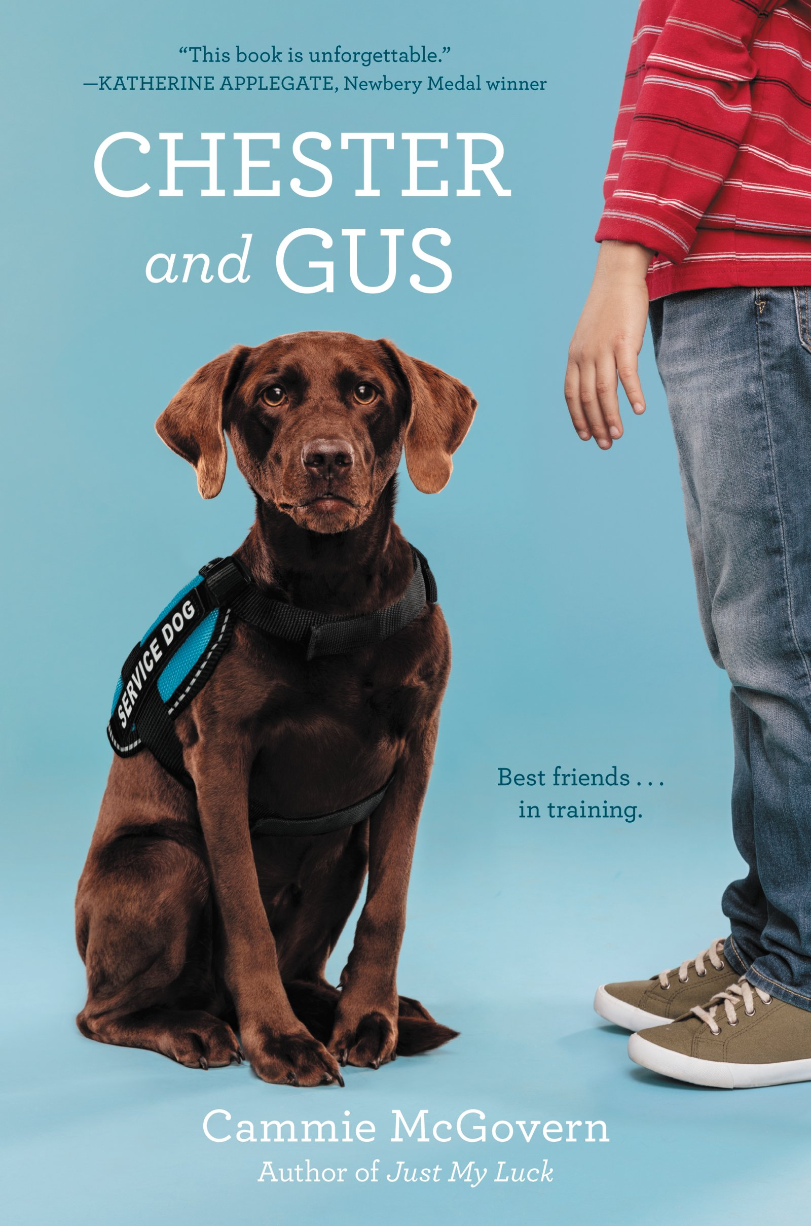 USA book cover