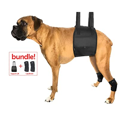 Dog Lift Harness Bundled with Rear Leg Brace Support Wraps - Veterinarian  Approved Pet Rehabilitation - Help Restore Mobility and Balance for ACL