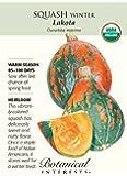 Organic Lakota Winter Squash Seeds - 2 grams - Botanical Interests