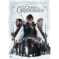 Fantastic Beasts: The Crimes of Grindelwald [DVD] [2018]