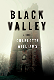 Black Valley: A Novel