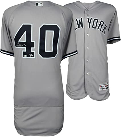 0ee9efa2e Image Unavailable. Image not available for. Color: Luis Severino New York  Yankees Autographed Majestic Gray Authentic ...