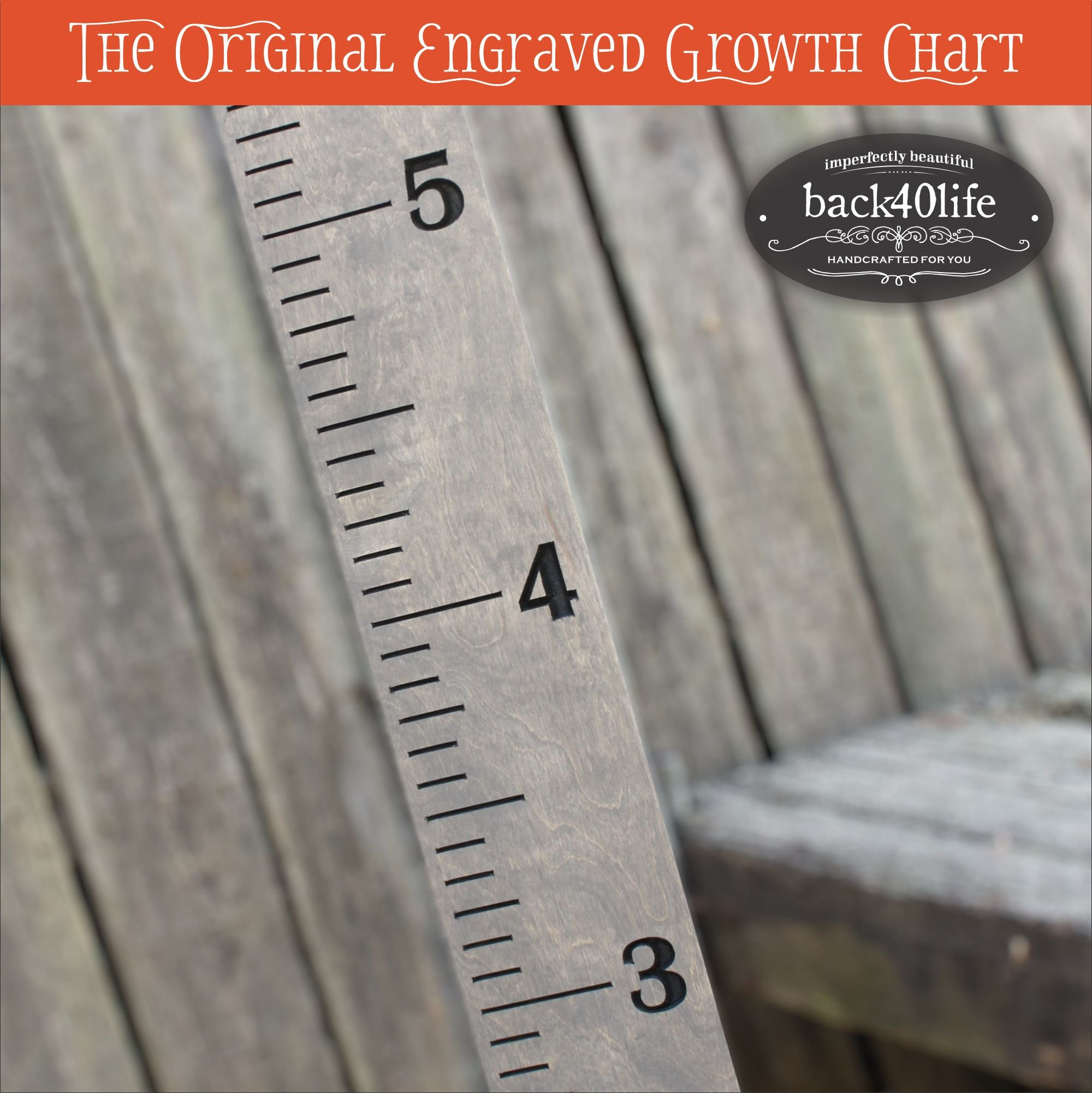 Back40Life | 60'' Premium Engraved Wooden Growth Height Chart Ruler - The Establishment (Gray Stain + Black)