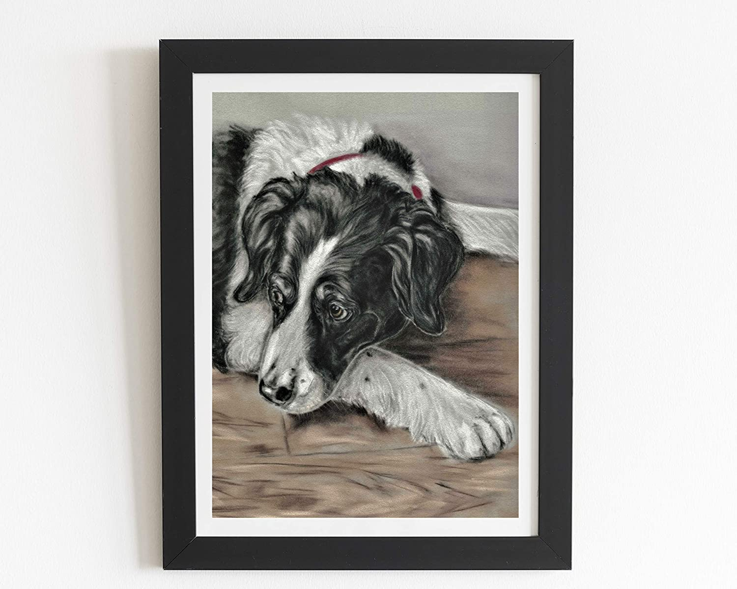 Framed Border Collie sheep dog gifts original art print boxed with signed Certificate
