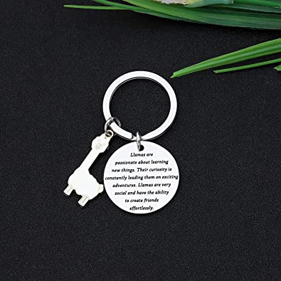 CYTING Llama Keychain Llamas are Passionate About Learning New Things Alpaca Jewelry Inspirational Gift for Llama Lovers Family Friends