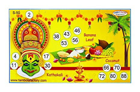 Tambola Factory South Indian Party Housie Ticket Game (15 8