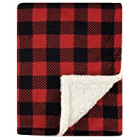 Deals on Hudson Baby Unisex Baby Plush Blanket with Sherpa Back