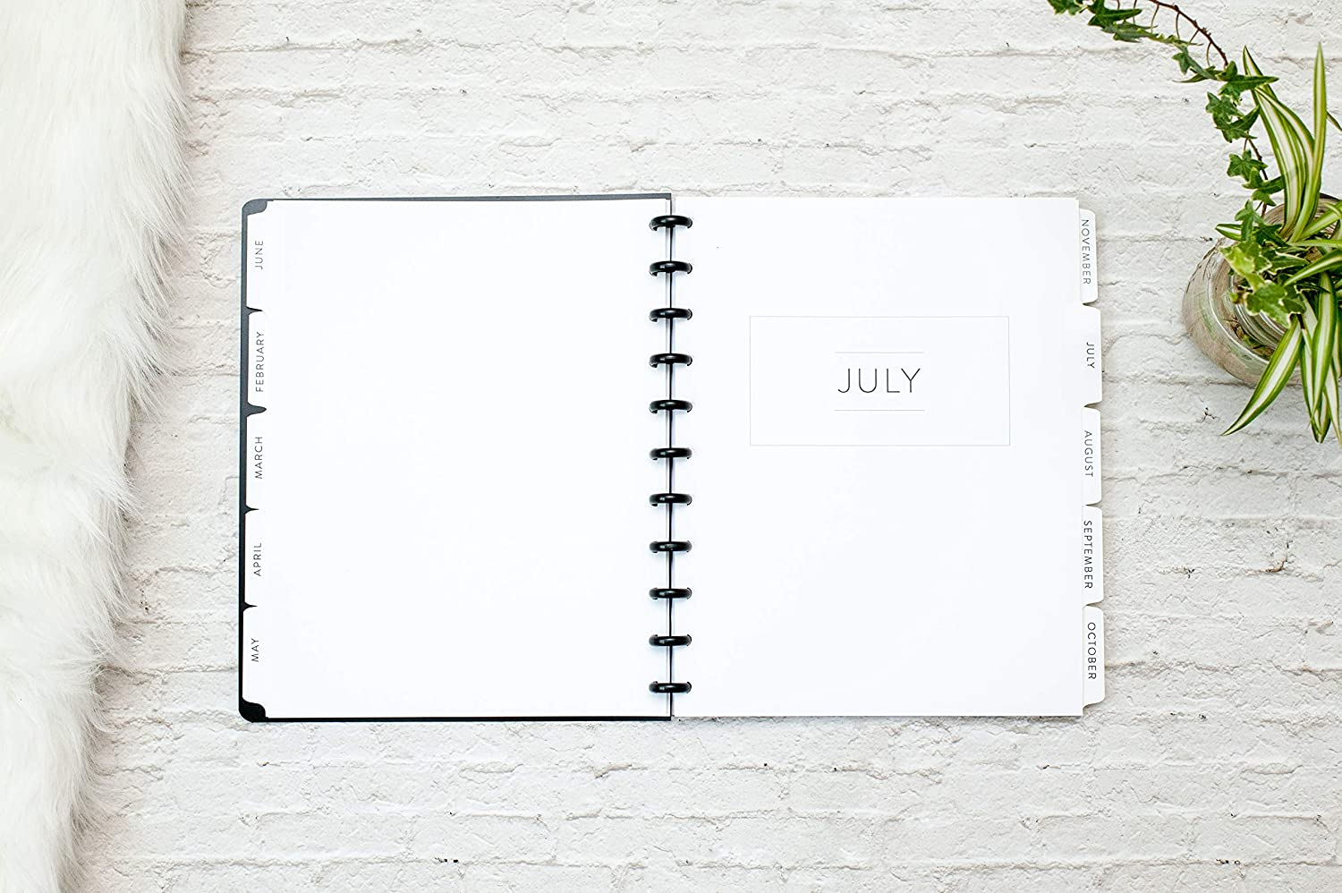 Dividers for Letter Size Discbound Planners, fits 11-Disc Calendar Notebook, Fits Levenger Circa, Arc by Staples, TUL by Office Depot, 8.5