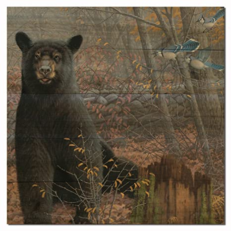 Amazon.com : WGI Gallery WA-SWBB-1212 Stonewall Black Bear Wall Art ...
