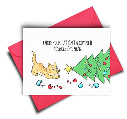 Amazon funny cat christmas cards cat lover card christmas funny cat christmas cards cat lover card christmas gifts for cat lovers funny m4hsunfo
