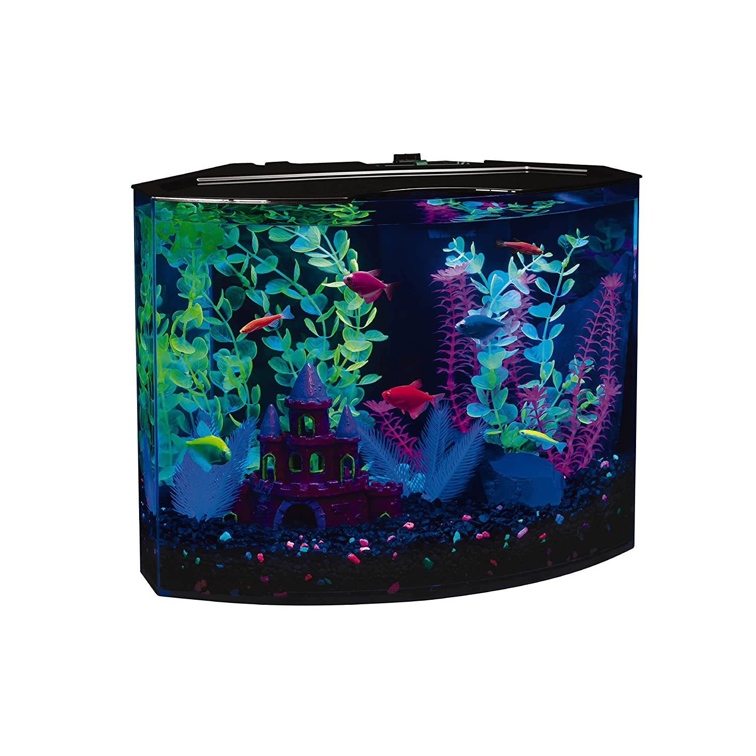 GloFish 29045 Kit Acuario con luz LED Azul, 5-Gallon: Amazon.es: Productos para mascotas