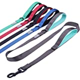 Vivaglory Reflective Dog Leash with Padded Handle, Heavy Duty 5ft Long Safety Training Double Handle Leash Walking Lead for M