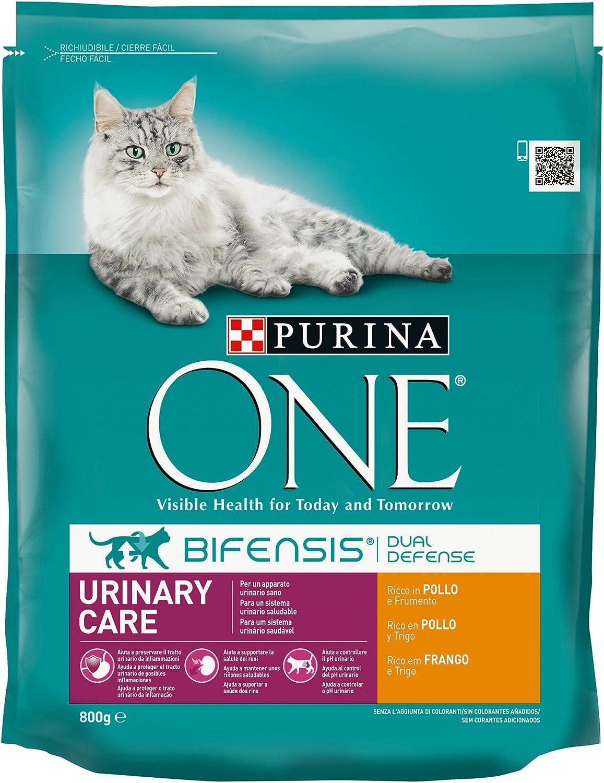 PURINA ONE Bifensis Pienso para Gatos con Cuidado Urinario Pollo y Trigo 8 x 800 g: Amazon.es: Productos para mascotas