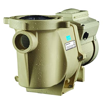Pentair 011018 IntelliFlo Variable Speed High Performance Pool Pump