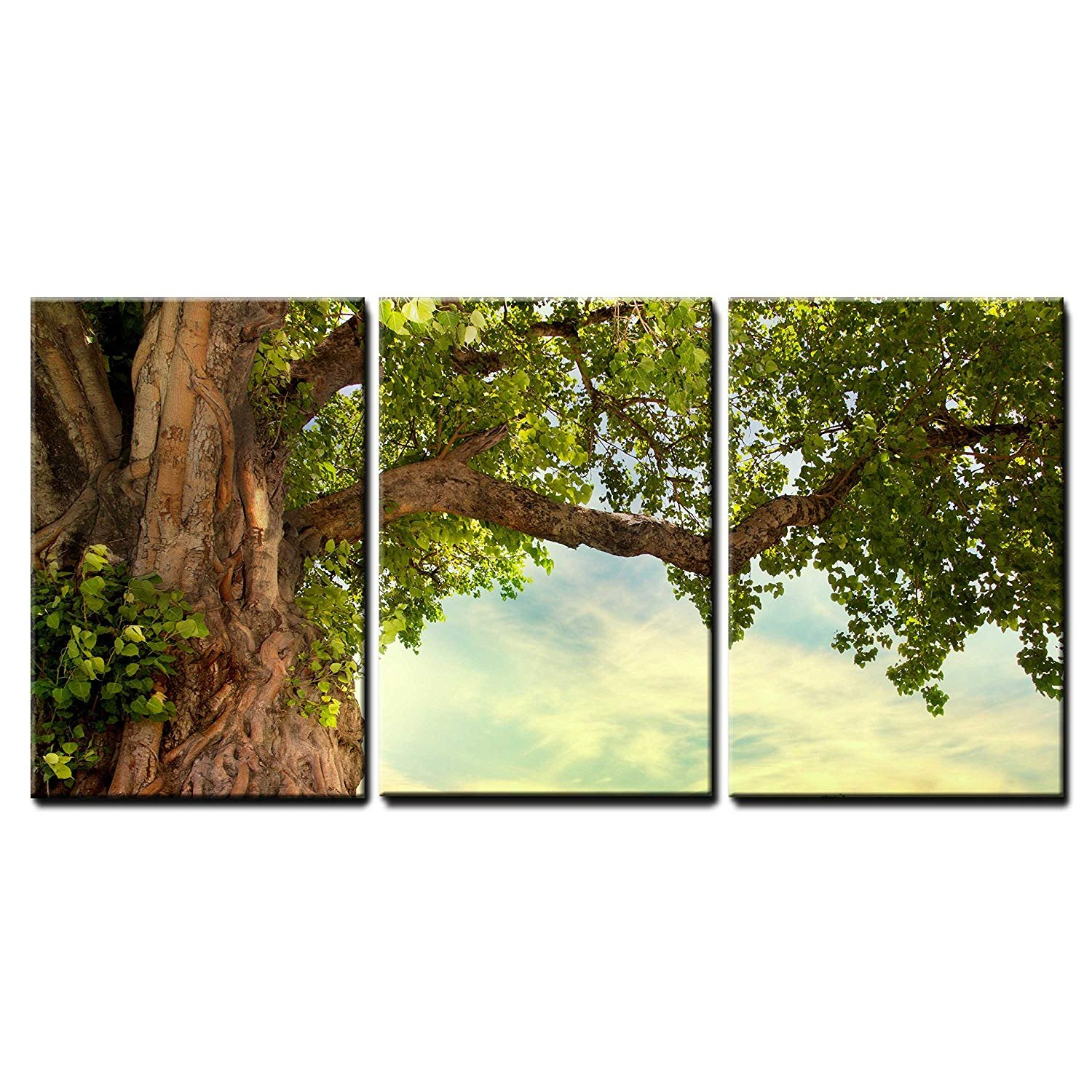 3 Piece Canvas Wall Art - Spring Meadow with Big Tree with Fresh Green Leaves - Modern Home Art Stretched and Framed Ready to Hang - 24