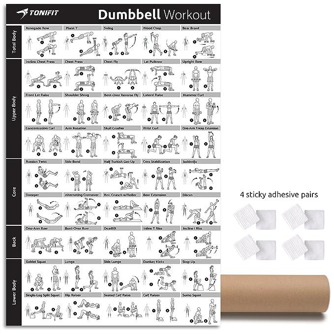 tonifit Dumbbell Fitness Póster de entrenamiento - entrenamiento de motivación para Core, parte trasera y total cuerpo - gimnasio en casa ejercicio, ...