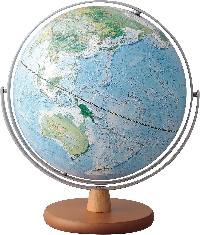 レイメイ藤井 地球儀 全回転 土地被覆タイプ 30cm OYV260