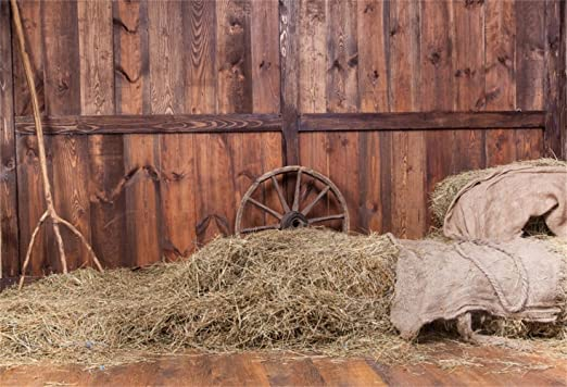 GoEoo 9x6ft Shabby Wooden Barn Photography Backdrop Farmhouse Interior Wheel Guitar Musical Instruments Haystack Photo Background Travel Portrait Photo Booth Props