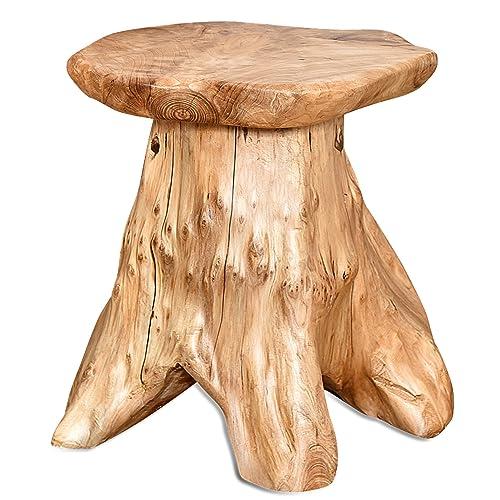 Tree Stumps: Amazon.com