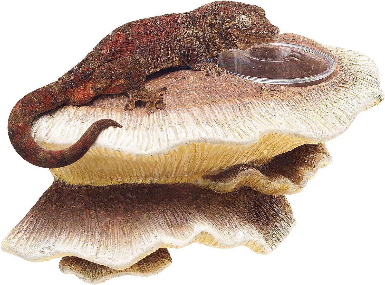 Zilla Vertical Décor for Reptiles