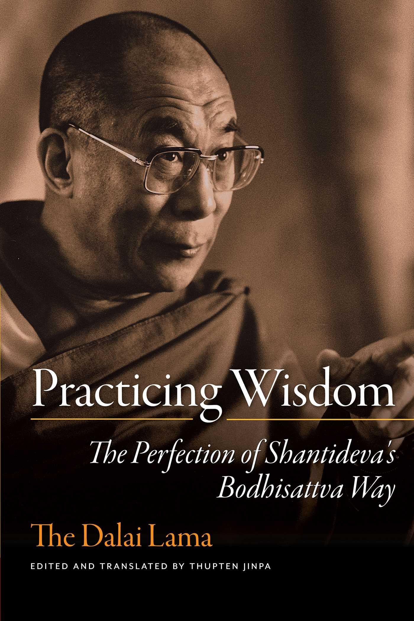 Practicing Wisdom: The Perfection of Shantideva's Bodhisattva Way