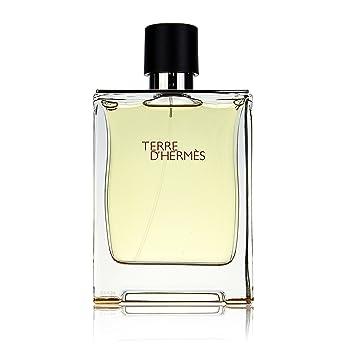 412f93402c0 Hermes Terre D Hermes Eau de Toilette for Men