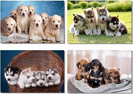 Poster Adorable Husky Chihuahua Dog Pet Room Art Wall Cloth Print 15