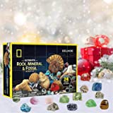 Blsolten Rocks Storage Gift Box Christmas Advent Calendar 2020 Gift - Includes 24 Window Rocks Kids Educational Toy…