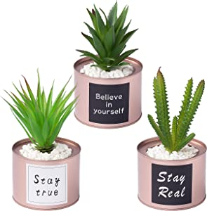 Desk Decor for Women Artificial Potted Plants,Set of 3 Fake Office Plants in Rose Golden Metal Pots,Office Desk Decorative Plants for Living Room,College Dorm,Office, Bookcase, Table