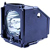 Philips OEM PHI/389 Samsung BP96-01472A DLP Replacement Lamp with Housing