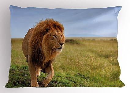 León almohada Sham por lunarable, fotografía de León en Masai Mara Kenya África Majestic Animal