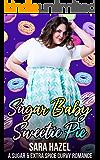 Sugar Baby Sweetie Pie (Sugar & Extra Spice Curvy Romance Book 1)