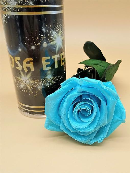 Rosa eterna Azul Light Extra. Gratis TU ENVÍO. Rosa preservada ...