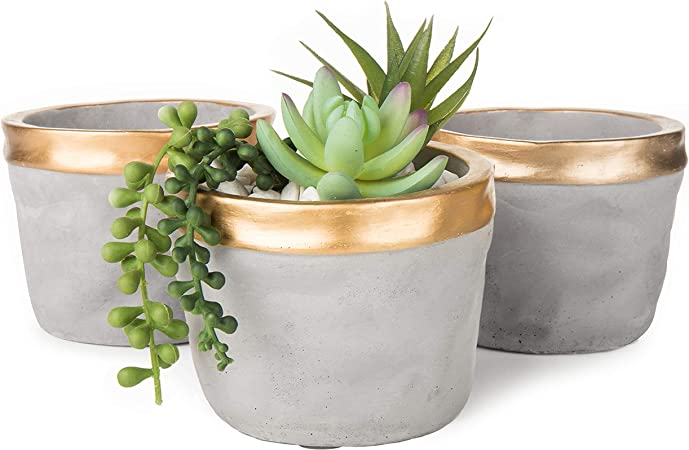 Cylinder 4 inch FREE SHIPPING in USA Concrete Planter