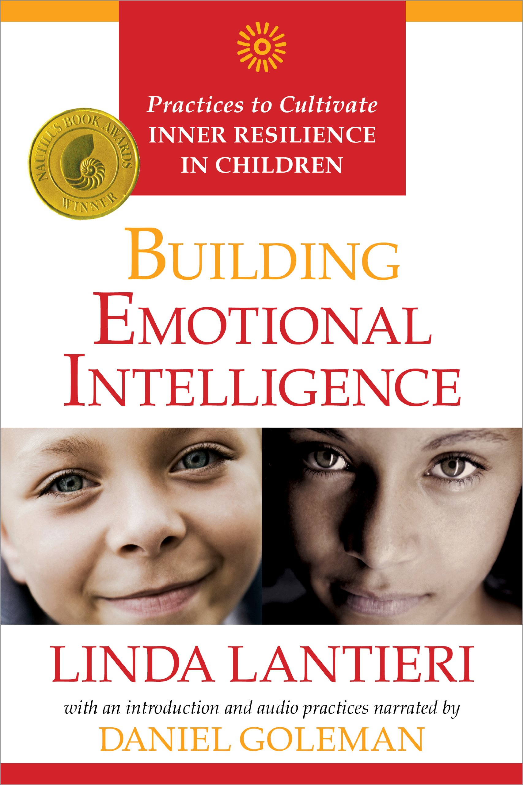 Goleman Emotional Intelligence Book