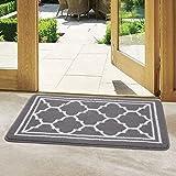 Buganda Indoor Door Mat (20x32,Grey) Resist Dirt and Absorbent Entryway Rug, Anti-Slip, Low Profile Inside Floor Mat Door Rug