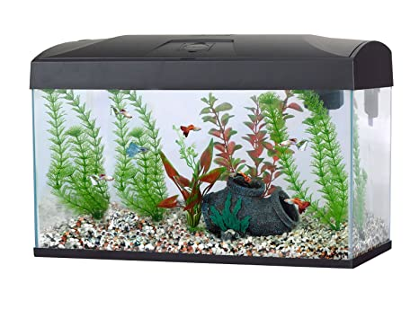 Fish R Fun Pecera rectangular, capacidad de 54 litros, 58,5 x 30
