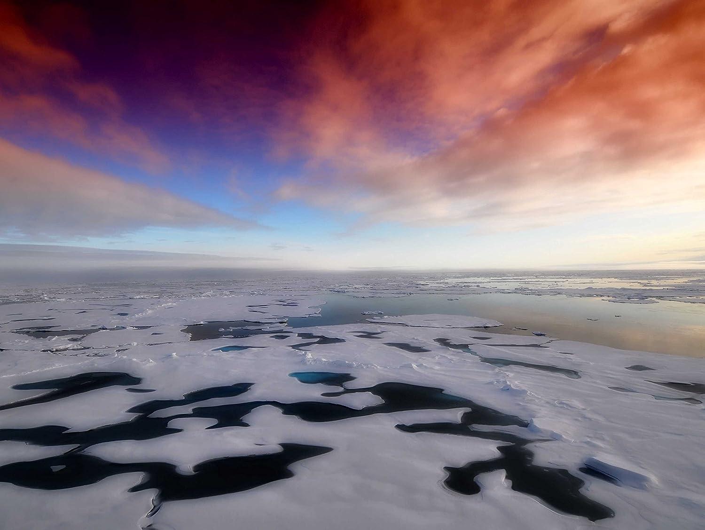 VERO PUZZLE 51389 Reisen - Antarktis, 2000 Teile in hochwertiger, cellophanierter Puzzle-Schachtel B07CTSCDSJ Klassische Puzzles Komfort | Elegant und feierlich