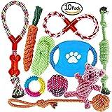 Set di Giocattoli per Cani Fonpoo, Set di Giocattoli di Solitudine della Corda da Masticare Durevole per piccolo Cagnetto Solitario per mantenere il Vostro Cane Sano, 10 Pacchetti