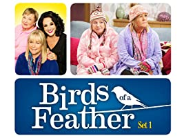 Birds of a Feather - Set 10