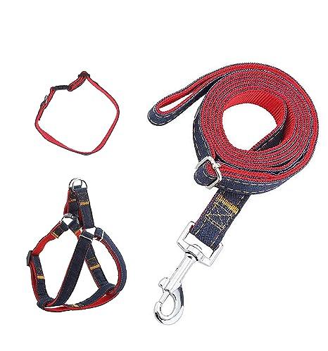 FengDing Correa para Perros, Cuerda de Plomo con Collares y ...