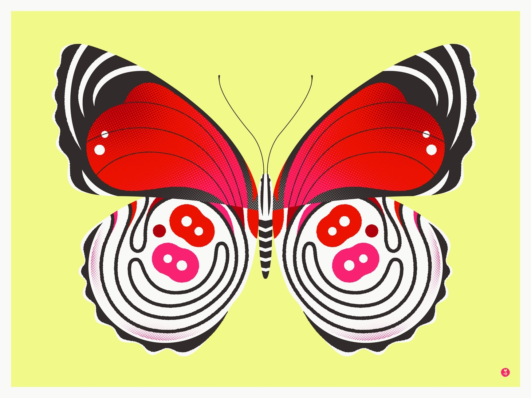 88 butterfly by