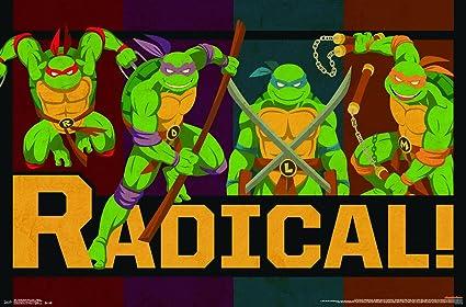 Amazon.com: Tendencias Internacional Teenage Mutant Ninja ...