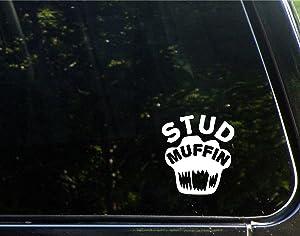Stud Muffin - 3-1/2