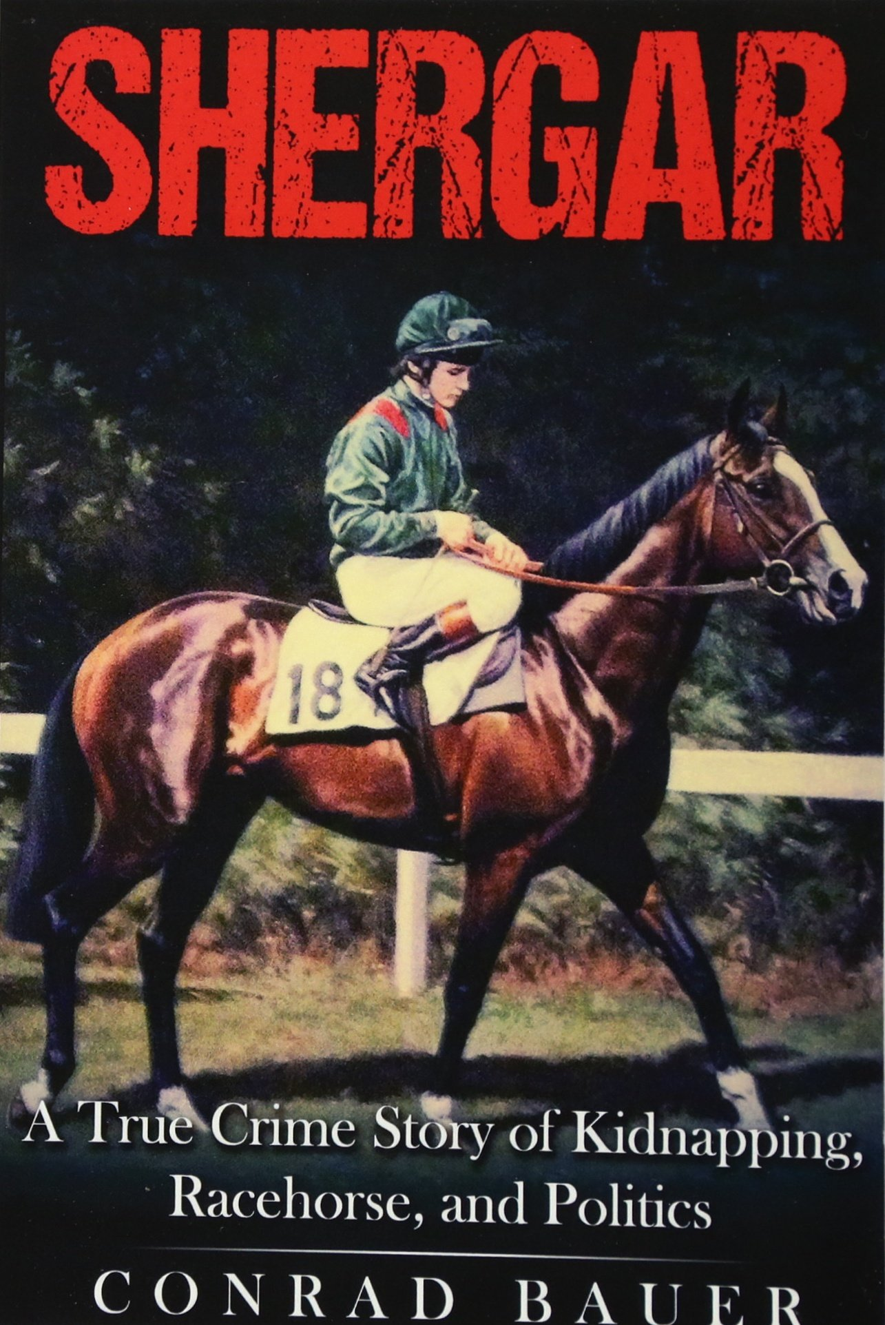 shergar-a-true-crime-story-of-kidnapping-racehorse-and-politics
