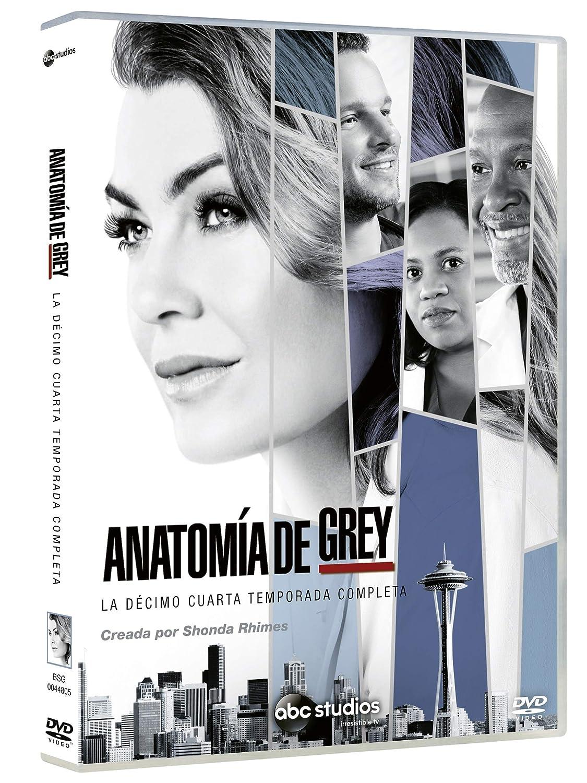 Amazon.com: Grey\'s Anatomy - Anatomia De Grey. La Decimo Cuarta ...